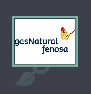 Seat Gas natural comprimido